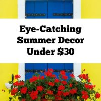 Stunning Summer Decor Under $30