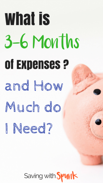 3 to 6 months expenses