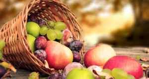 voće u košari