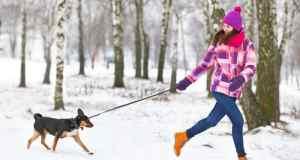 zimska odjeća