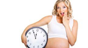 Termin poroda