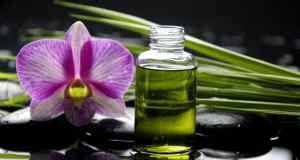 prirodni parfem