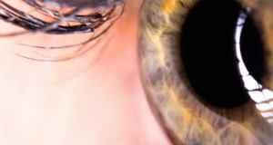 otvoreno oko