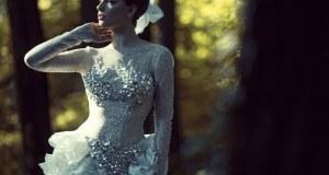 cirkoni na haljini