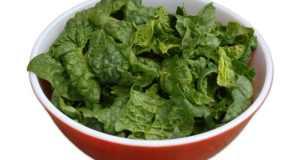 zeleni obrok