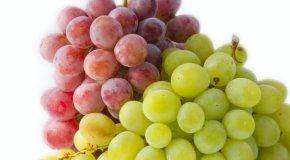 Dijeta s grožđem