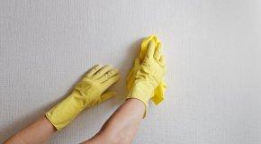Trikovi za čišćenje doma