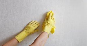čišćenje rukavicama