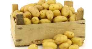 krumpir kao lijek