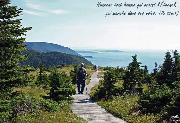 Marcher par l'Esprit ? Heureux tout homme qui craint l'Eternel, qui marche dans ses voies (Ps 128.1) !