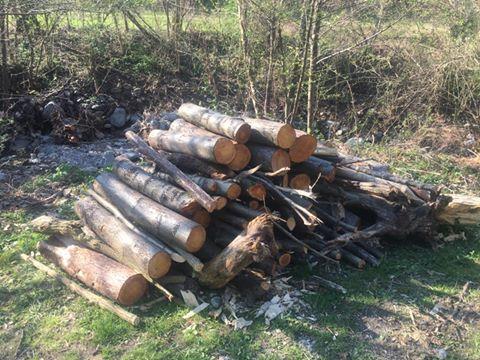 Terminati i lavori di pulizia allinterno dellalveo del fiume Zemola a Roccavignale  Attualit