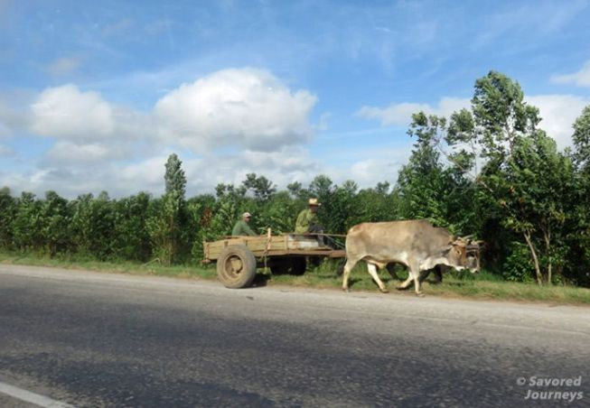 In the countryside they use more traditional methods of transportation