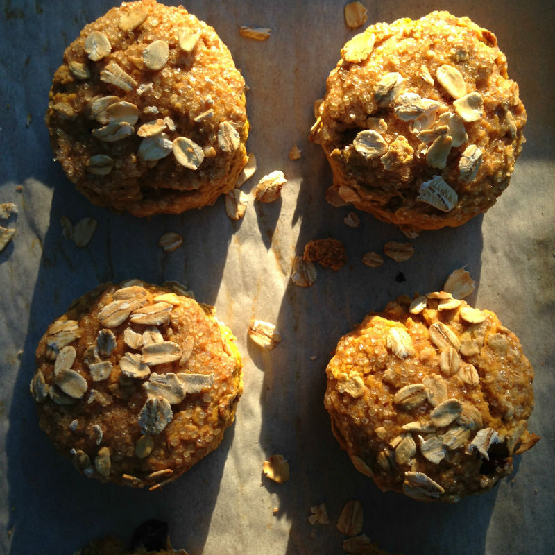 overhead image of scones with oats on top