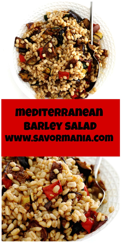 mediterranean barley salad   www.savormania.com
