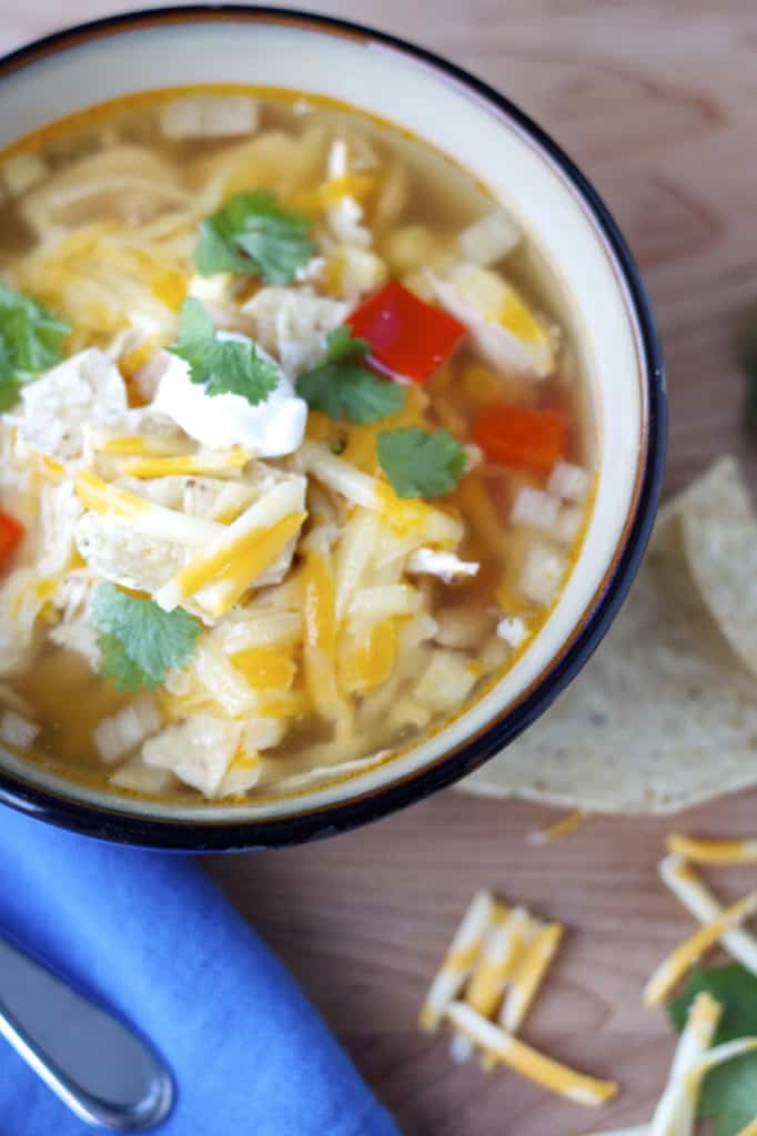 20 Healthy Slow Cooker Recipes for Family Comfort Foods, rounded up on savorynothings.com