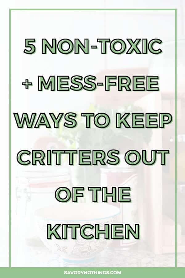 Keep critters out of the kitchen with these 5 tips for non-toxic and mess-free insect repellents and traps!