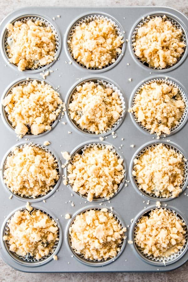 unbaked blueberry muffins with streusel in muffin pan