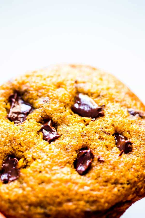 close up photo of pumpkin chocolate chip cookie