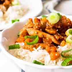 close up of white bowl with apricot chicken and rice