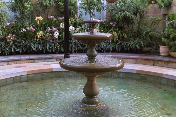 botanical garden tasmanie