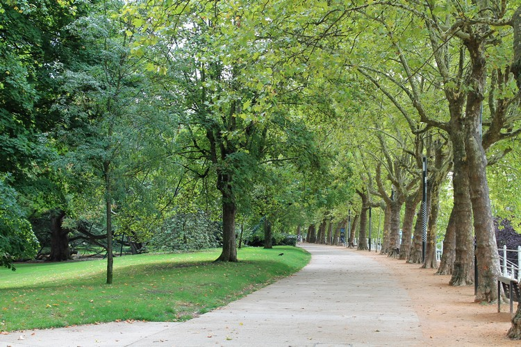 vichy parc