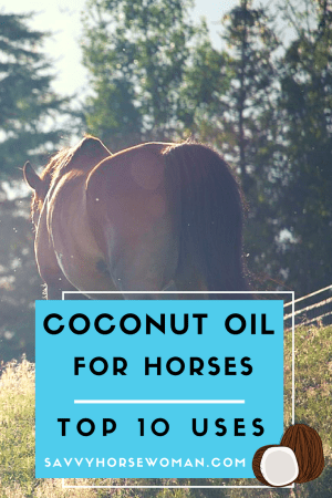 Coconut Oil for Horses | DIY Horse Care | Natural Horse Care