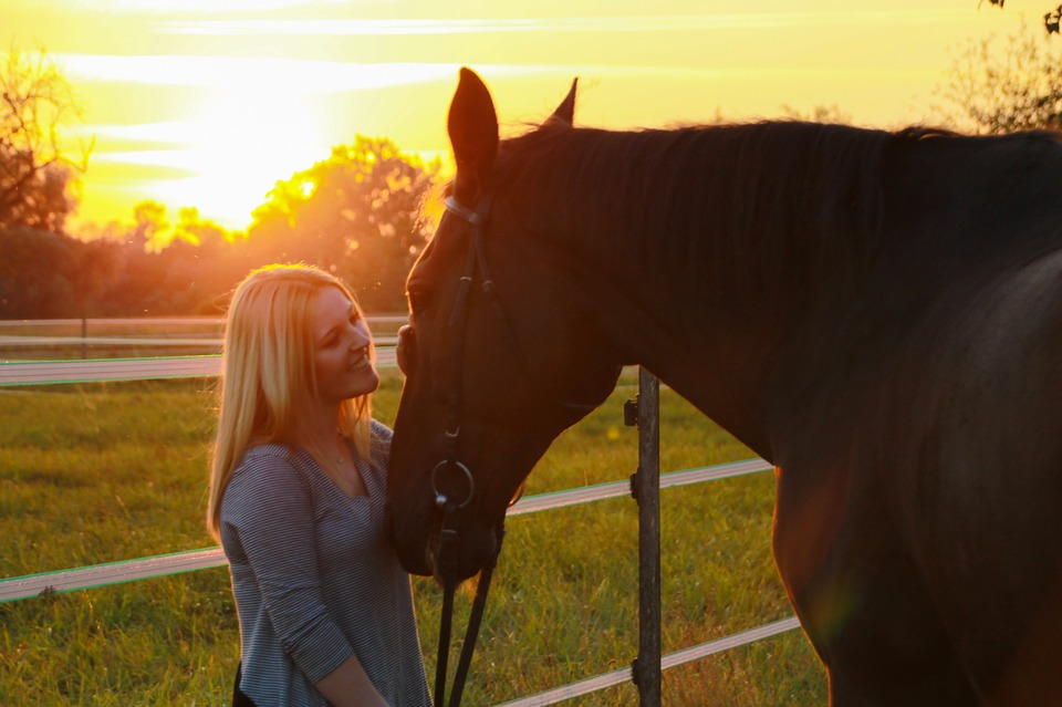 Practical Gift Ideas for Equestrians - Savvy Horsewoman