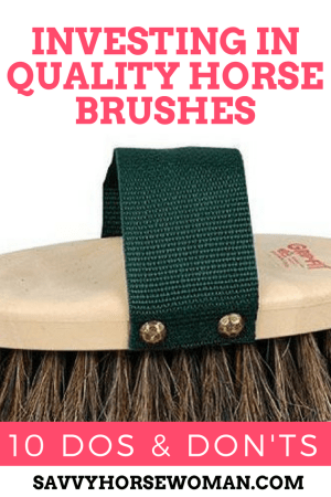 Choosing Horse Brushes | Horse Grooming | Horse Care | Savvy Horsewoman