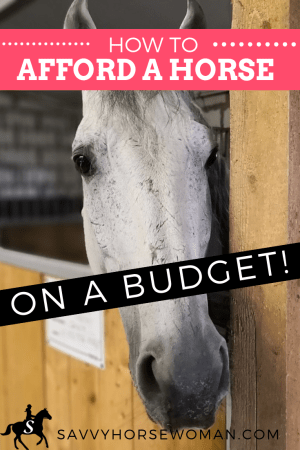 How To Afford a Horse on a Budget by Savvy Horsewoman