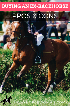 Buying an Ex-Racehorse OTTB - Pros & Cons
