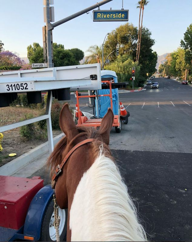 How to Be Safe Riding Your Horse in the City