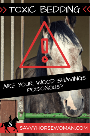 Toxic Shavings for Horses - Are Your Wood Shavings Poisonous? Savvy Horsewoman
