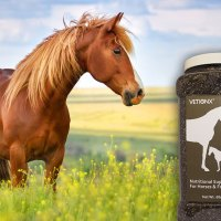 VETiONX® Equi-Chia - Chia Seed Blend for Equine Wellness Support