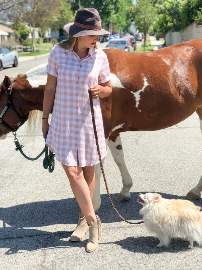 Horses & Heels