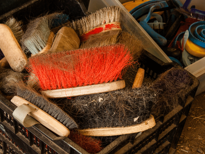 how to clean dirty horse brushes