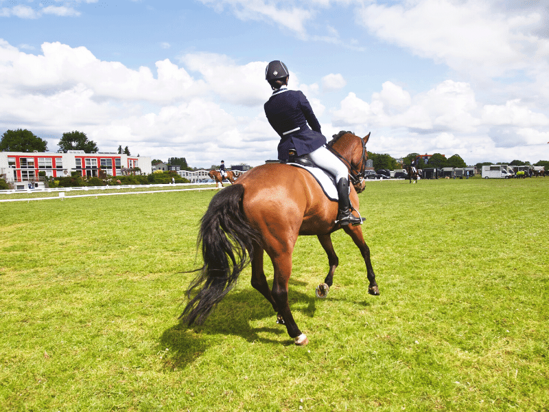 How to Nail the Canter