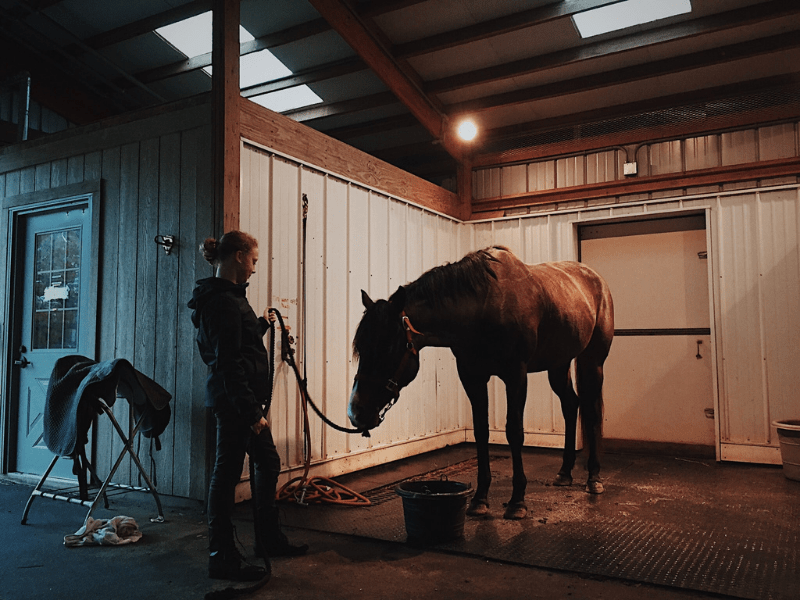 What to Bring to Your First Horseback Riding Lesson