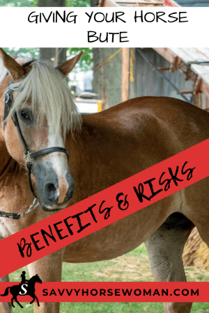 benefits and risks of feeding bute