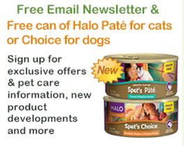 Free Cat Food  - Halo Pate