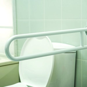 Flip-Up Double Grab Bar