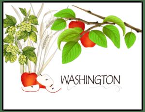 SP 10b - washington apples