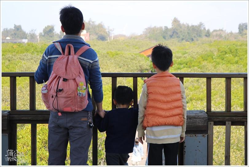 20190203-新豐紅樹林05.JPG
