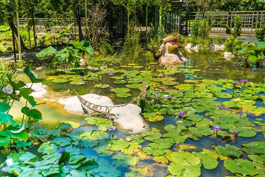 [桃園景點]蓮荷園休閒農場/桃園大王蓮/限重100公斤可站可躺/荷葉蓮子大餐還有蓮子剉冰超消暑