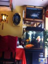 Chez Thuong (4)