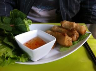 ginseng (5)