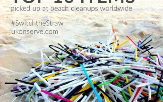 Plastic Straws are No Laughing Matter; Jail Time for Servers Offering Straws in California?