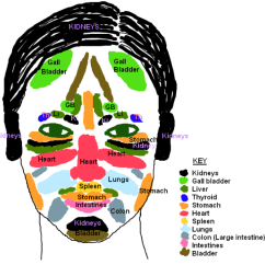 What Causes Acne Diagram Venn Puzzles Spot Positions Locations And Chinese Face Mapping It S