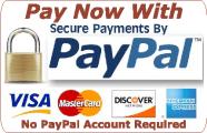 SBAUG_PayNowPaypal_20Jun2015_3