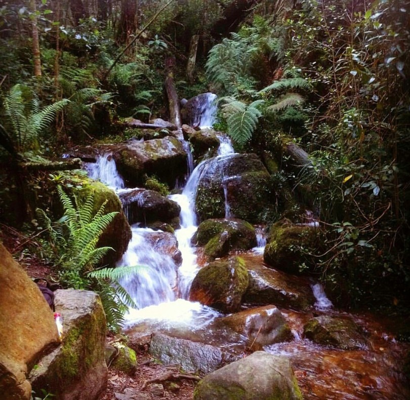 waterfall_hike_nature_beauty_colombia