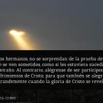 Versículos de la Biblia acerca de la persecución